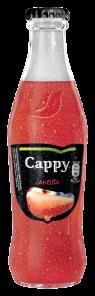 Cappy Jahoda 0,25L SKLO 24KS/BASA