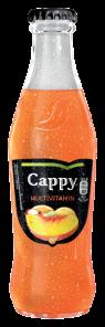 Cappy Multivitamín 0,25L SKLO