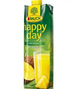 Happy Day Ananas  1L